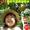 幸水 5kg【訳あり】【2L】こうすい 梨 5キロ 集荷量で有名 なし【全国出荷量有名産地】 千葉県の梨 幸水ナシ限定予約…