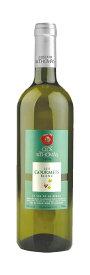 【レバノンワイン】レ・グルメ・ブラン(白・辛口)Les Gourmet Blanc (White, Dry)(Clos St.Thomas, Lebanon) 750ml