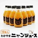 【予約(4月)こたつなしタイプ受付中】わかやま ニャンジュース 180ml瓶×10本入 (和歌山みかん100% ストレート 保護猫活動 オレンジジ…