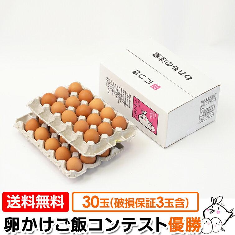 【卵 送料無料】 紀州 うめたまご 30玉(27玉+内 破損保証3玉含む) 卵かけごはん専用 たまご ギフト プレゼント 玉子 鶏卵 うめどり 美味しい生卵 卵掛けごはん