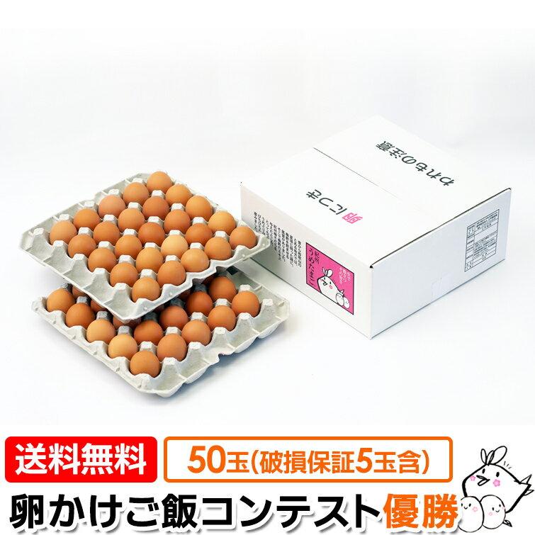【たまご 送料無料】 紀州 うめたまご 50玉(45玉+内 破損保証5玉含む) 卵 卵かけごはん専用 ギフト たまご 卵 玉子 鶏卵 うめどり 卵掛けごはん