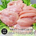紀州うめどり2kgセット【ムネ肉1kg】【ささみ1kg】国産鶏肉の紀州うめどり。たっぷり2kgの鶏肉でいろいろな鶏肉料理に挑戦できます!