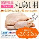 丸鶏 (丸鳥) 1羽 【冷凍 中サイズ】国産鶏肉 紀州うめどり 中抜き 約2.0kg 鶏肉 ( 鶏肉1羽 / 鳥肉1羽 ) 丸鳥ト体 丸鳥…