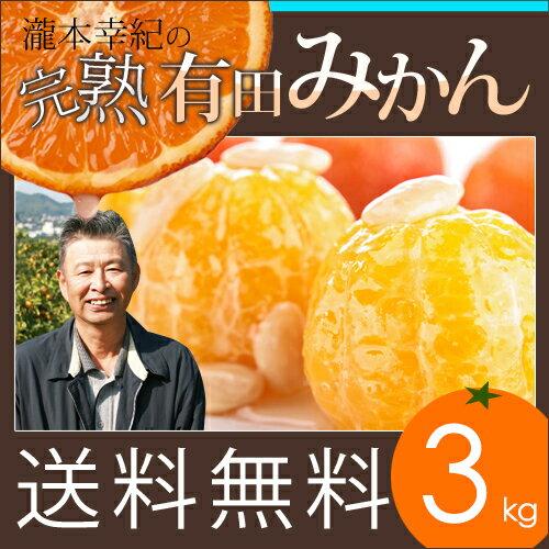 【3kg】【秀品】瀧本農園の高級 有田みかん S・M・Lサイズ 3kg 送料無料 GAP農法を取り入れた独自の酵素栽培でじっくり育てました。近隣のミカン通も唸る美味しさ。産地直送 和歌山県産 本物志向の有田みかんです。