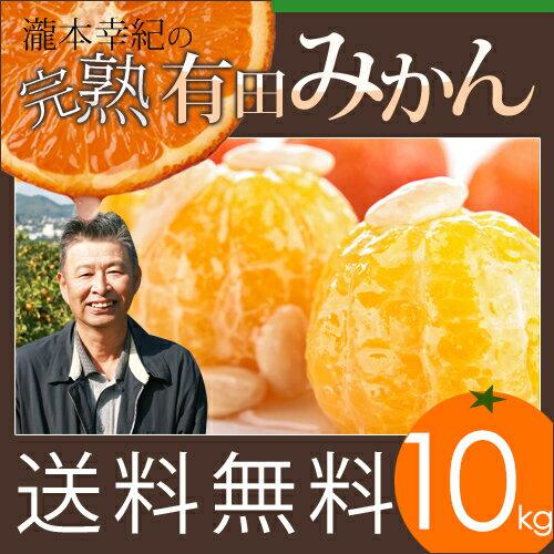 【10kg】【秀品】瀧本農園の高級 有田みかん S・M・Lサイズ 10kg 送料無料 GAP農法を取り入れた独自の酵素栽培でじっくり育てました。近隣のミカン通も唸る美味しさ。産地直送 和歌山県産 本物志向の有田みかんです。