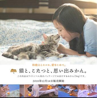 猫と、こたつと、思い出みかん。