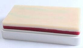 人工 皮膚 筋肉 樹脂 パッド 手袋 セット 人体模型 注射練習 シミュレーション 縫合練習 学習教材 L988 医療 ゴム手袋 セット 三層構造 皮膚 脂肪 筋肉 看護学生 講師 教材用