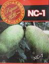 ポポー(ポーポー) 「NC-1」6号 苗木 接木 果樹 r