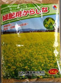 からしなの種(カラシナ) 「黄花のちから」 1kg