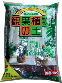 Plant soil 12L×4 individual immigration cases