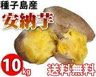 しっとり甘〜い蜜のお芋種子島産安納芋10kg