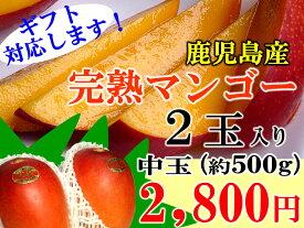 鹿児島産完熟マンゴーパック入り 500g(1〜2玉)お買い得マンゴー