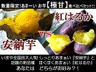 ほくほく甘くて美味しい★紅はるかとしっとり甘い安納芋の食べ比べセット