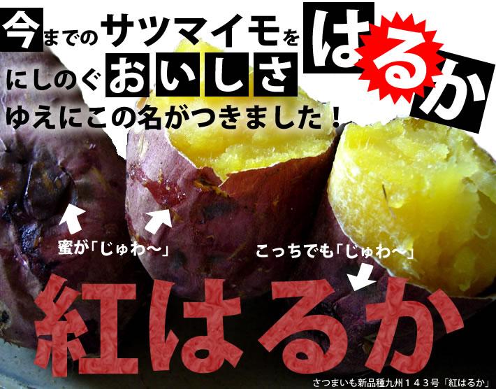 鹿児島産 紅はるか 5kgほっこり甘い大人気の新品種のお芋です★2L〜Mサイズ 【日付指定不可】【発送予定10月中旬〜】