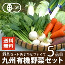 有機野菜セット おまかせ5品目 九州産 鹿児島県 有機栽培 有機JAS 冷蔵便 オーガニック 無農薬 西日本 お試し 詰め合わせ 送料無料