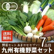野菜セット有機野菜おまかせセブン九州野菜鹿児島県有機栽培JAS認証送料無料7品目ヘルシーテイスティ