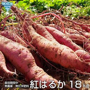 紅はるか 18kg 化学肥料・農薬不使用 鹿児島県産 宮崎県産 土付き さつまいも 薩摩芋 サツマイモ からいも べにはるか 国産 スイートポテト 焼き芋 無農薬