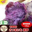 紫芋 送料無料 10kg 有機栽培 鹿児島県産 アントシアニンが豊富 パープルスイートロード さつまいも