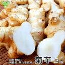 菊芋 2kg 化学肥料・農薬不使用 宮崎県産 鹿児島県産 熊本県産 イヌリン 天然のインシュリン 血糖値 オリゴ糖 きくい…