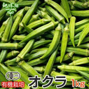 オクラ 1kg 有機栽培 鹿児島県産 有機JAS おくら 生 ネバネバ おひたし 和え物 冷蔵便 無農薬