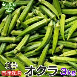 オクラ 3kg 有機栽培 鹿児島県産 有機JAS おくら 生 ネバネバ おひたし 和え物 冷蔵便 無農薬