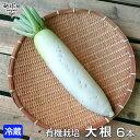 大根 6本 有機栽培 冷蔵便 鹿児島県産 宮崎県産 大根おろし だいこん ダイコン 九州産 九州野菜 オーガニック organic