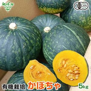 かぼちゃ 5kg 有機栽培 鹿児島県産 宮崎県産 有機JAS 南瓜 オーガニック カボチャ pumpkin squash 南京 無農薬