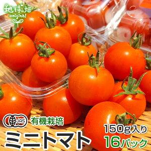 ミニトマト 有機栽培 150g×16p 鹿児島県産 有機JAS 農薬・化学肥料不使用 プチトマト とまと パック入り 無農薬 冷蔵便 国産 発送期間6〜7月