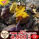 焼きイモ【送料無料】安納芋 400g×5袋 種子島産 有機栽培の安納芋で作った焼き芋 冷凍