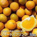 スイートスプリング 2kg 化学肥料・除草剤・防腐剤不使用 鹿児島県産 熊本県産 特別栽培 大きさおまかせ サイズ混合 …