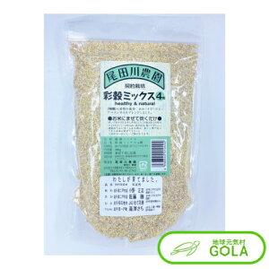 彩穀ミックス4種 380g 尾田川農園 たんぱく質 ミネラル 鉄分 食物繊維