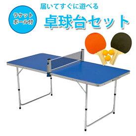 地球家具 卓球台 セット ポータブル ピンポンテーブル 折りたたみテーブル アウトドア 卓球台 ラケット2つ ボール3つ ネット付