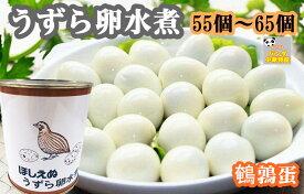 ほしえぬ うずら卵水煮 55個〜65個入り うずらの卵 鶉の卵  中華物産  ウズラ卵  うずらなまご 業務用