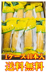 送料無料 40本入 真空 黄 糯 玉米 粘玉米 とうもろこし トウモロコシ ワキシーコーン 農作物  粘苞米 苞米 糯玉米