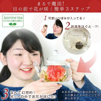 カーネーション咲く工芸茶10種とガラスのティーポット/優雅セット