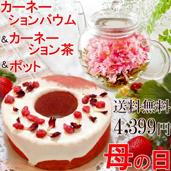 送料無料 カーネーションバウムクーヘン ティーポット お花のつぼみ 母の日ギフト 2018 カーネーション茶 工芸茶