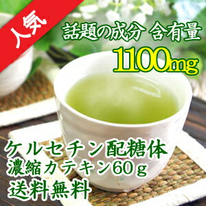 ケルセチン配糖体濃縮カテキン 粉末パウダー60g