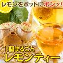 1個まるごとレモンティー5個 紅茶 アイスティー レモンティー 送料無料