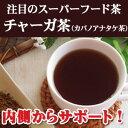 チャーガティー チャーガ茶(カバノアナタケ茶)30包 ティーバッグ 健康茶 チャガ茶