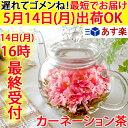 【遅れてゴメンね】送料無料 ティーポット お花のつぼみ カーネーション茶 工芸茶 母の日 ギフト 2018m