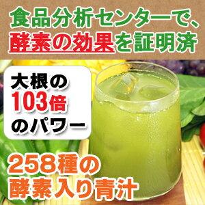 258種類の酵素入り青汁 ジップパック100g/スティック20包