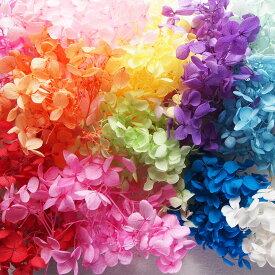アジサイ・ヘッド プリザーブドフラワー約10g ハーバリウムに使える花材 レジン パーツ アクセサリー サシェ アロマワックス クラフト あじさい