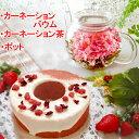 母の日 お花のつぼみとティーポット カーネーション茶 お花のつぼみとティーポット カーネーションバウムクーヘン 202…