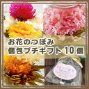 お花のつぼみ【個包ギフト】10個 ポットで花が咲く工芸茶