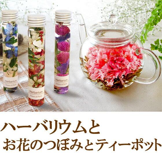送料無料 ハーバリウム お花のつぼみ ティーポット 母の日ギフト 2018m