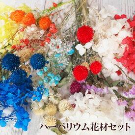 ハーバリウム花材セット プリザーブドフラワー ドライフラワー 花材 プリザ 乾燥花 アジサイ クラフト 工作 ハンドメイド サシェ レジンアート 材料