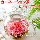 送料無料 お花のつぼみとティーポット 父の日ギフト カーネーション茶 工芸茶 父の日プレゼント 花 花茶 人気商品 お…