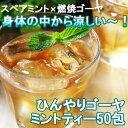 ひんやりゴーヤミントティー30包 ゴーヤ茶 送料無料