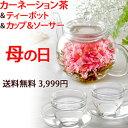 母の日ギフト お花のつぼみとティーポットとカップ&ソーサー 誕生日や内祝いやお祝いギフトプレゼントに カーネーション茶 送料無料 花咲く工芸茶ギフト hh
