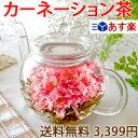 【あす楽】母の日ギフト お花のつぼみとティーポット 女性 お茶 花 あす楽 カーネーション茶 お茶 工芸茶 ギフト